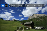 Image rating screen