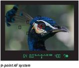 AF system screen