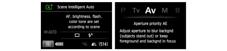Camera menu options