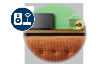 Wireless Networked Audio
