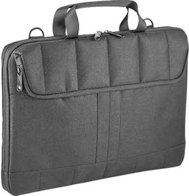 Insignia laptop computer case.