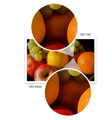 Close-ups of fruit at two ISOs