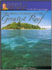 Triumph and Tragedy on the Greatest Reef DVD