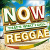 Now That's What I Call Reggae - Various - CD