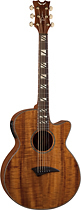 Dean - Performer 6-String Mini-Jumbo Acoustic/Electric Guitar - Natural