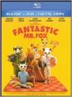 Fantastic Mr. Fox - Widescreen Dubbed Subtitle AC3