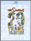 Simpsons: Season 20 [2 Discs] - Widescreen Dubbed Subtitle AC3